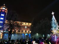 Коледната елха на Плевен грейна! /снимки/