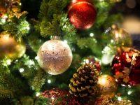 """Коледно дърво ще грейне и в ОУ """"Лазар Станев"""" – Плевен"""