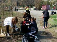 За поредна година служители на Община Долни Дъбник почистиха и освежиха градския парк
