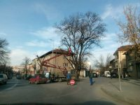 В Плевен продължава превантивната резитба на дървета