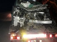 Кон, излязъл на пътя, причини катастрофа край Горни Дъбник