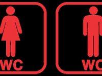 Модерни градски тоалетни може да бъдат поставени в Плевен