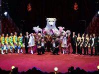 """От 10 до 16 юни Академичен цирк """"Балкански"""" ще гостува в Плевен!"""