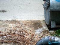 Почистващите фирми нямат задължението да изнасят боклуците от частните дворове, струпани около контейнерите