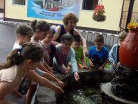 """В НУ """"Христо Ботев"""" – Плевен започнаха летните занимания за бъдещите първокласници"""