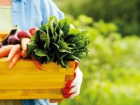 Открита приемна за Програмата за развитие на селските райони ще се проведе днес в Пордим