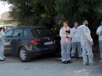 28 са евтаназираните прасета в Никополско във връзка с африканската чума по свинете