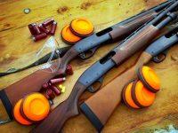 Предстои провеждането на Регионален турнир по ловна стрелба за Купа Кнежа