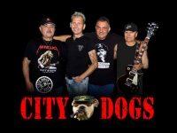 """Парти с рокаджиите """"City Dogs"""" организират на басейна в Левски"""