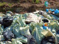 """Над 15 тона отпадъци са събрани в Плевен по време на кампанията """"Да изчистим България заедно"""""""
