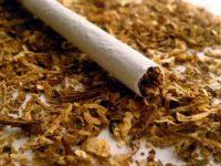 30 кг контрабанден тютюн иззети при проверка в село Българене