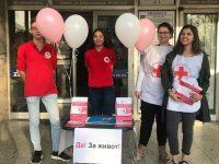 """Млади червенокръстци в Плевен раздават донорски карти в подкрепа на кампанията """"Да! За живот!"""""""