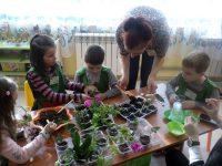 """Проектантска фирма ,,Зелен рай"""" отвори врати днес в ДГ """"Дружба"""" – Плевен"""