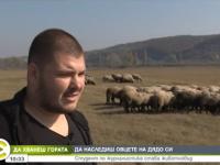 Младеж разказва защо избра да гледа стадото с овце на дядо си в плевенско село /видео/