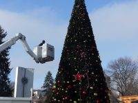 Близо 13-метрова коледна елха се издига в центъра на Плевен