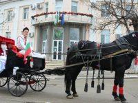 Дядо Коледа и Снежанка раздадоха подаръци на деца в община Кнежа