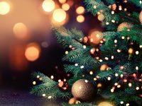 Светлинките на коледната елха в Белене ще грейнат на 10 декември