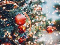 Коледната елха на Пордим грейва на 12 декември /празнична програма/