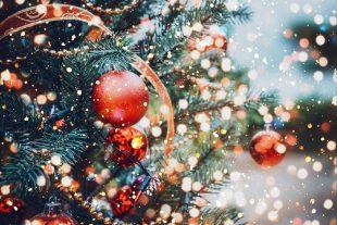 Коледната елха на Пордим грейва тази вечер /празнична програма/