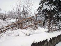 ЧЕЗ възстанови електрозахранването на всички населени места от област Плевен