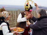 В Трънчовица зарязаха лозята с празник и надежда за възраждане поминъка на селото