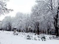 19 см сняг натрупа в Плевен