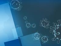 Здравните власти в Плевен заседават за мерките в случай на потвърдена проба за коронавирус