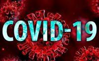 134 заразени с коронавирус и 96 новоизлекувани, в област Плевен – още 4 положителни проби