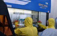 Между 160 и 180 PCR теста на ден се правят в лабораторията за COVID-19 на МУ – Плевен