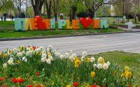 """""""Защо обичам Плевен"""" е темата на общински конкурс за детско творчество! Участвайте!"""
