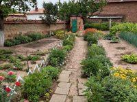 """Обявиха победителитеот онлайн фотоконкурс """"Моята градина"""" в село Асеновци"""