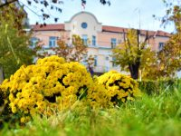 """Общинските съветници от ПП """"ГЕРБ"""" в Кнежа даряват част от заплатите си"""