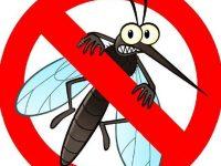 В Никопол тази вечер ще третират срещу комари