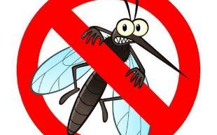 В Левски ще пръскат срещу комари