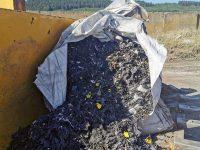 Част от отпадъците в землището на Червен бряг са внесени от Словакия и Румъния