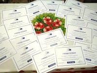 ПГПЧЕ – Плевен с отличия като училище – европейски посланик