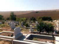 Приключва косенето на гробищните паркове в Плевен, започва разчистване на храсти и клони