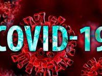 Коронавирус: 182 нови случаи при 2 843 PCR теста, в област Плевен – 2 положителни проби