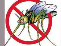 Пръскане срещу комари със самолет ще се извърши на 13 и 14 август в Левски