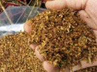 25 килограма насипен тютюн откриха в кола в Буковлък