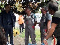 Разрешен е проблемът с честите аварии на тока в село Беглеж