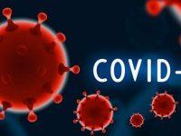 169 нови случаи на COVID-19, в област Плевен – 1 положителна проба