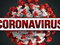 8,1% положителни проби за коронавирус, в област Плевен – 17 новозаразени