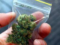 Задържаха 22-годишен с марихуана