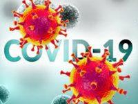 Област Плевен с най-висока заболеваемост от коронавирус