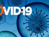 0,6% положителни проби за коронавирус, в област Плевен – 3 новозаразени