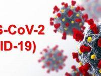 Без нито един новозаразен с коронавирус в област Плевен, в страната – 51