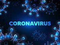 2803 са новите случаи на коронавирус, в област Плевен – 71!