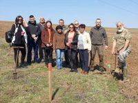 Извършва се залесяване в няколко местности в община Плевен