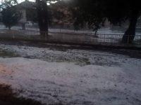 Опустошителна градушка в село Комарево /снимки/